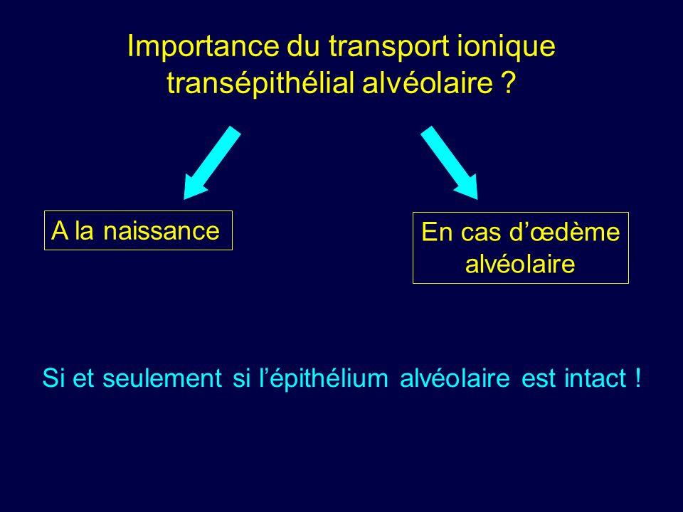Importance du transport ionique transépithélial alvéolaire ? A la naissance En cas dœdème alvéolaire Si et seulement si lépithélium alvéolaire est int