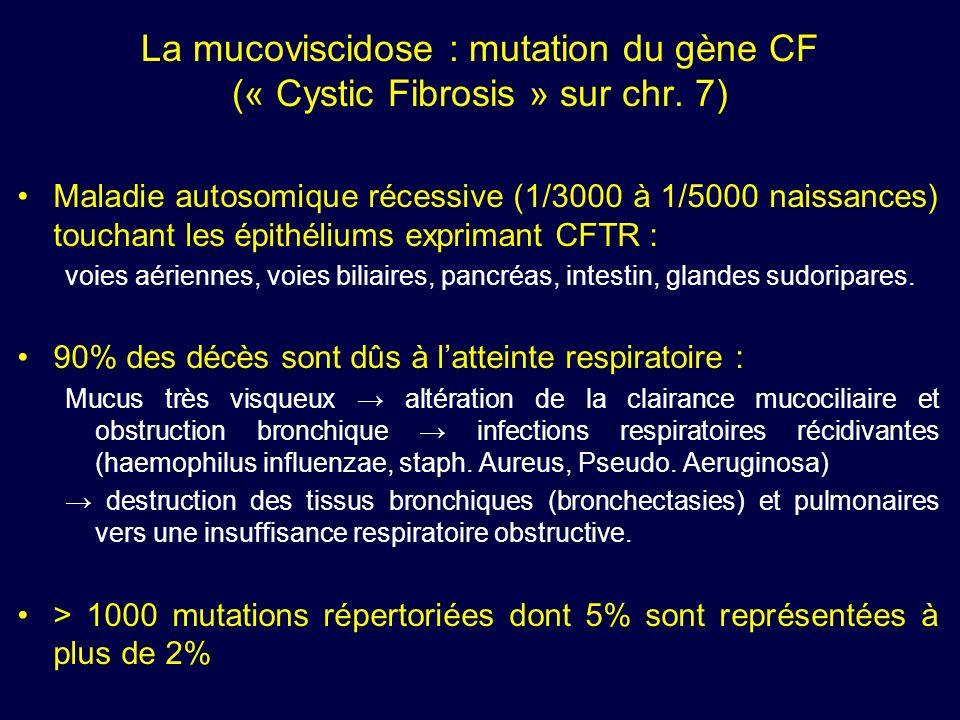 La mucoviscidose : mutation du gène CF (« Cystic Fibrosis » sur chr. 7) Maladie autosomique récessive (1/3000 à 1/5000 naissances) touchant les épithé