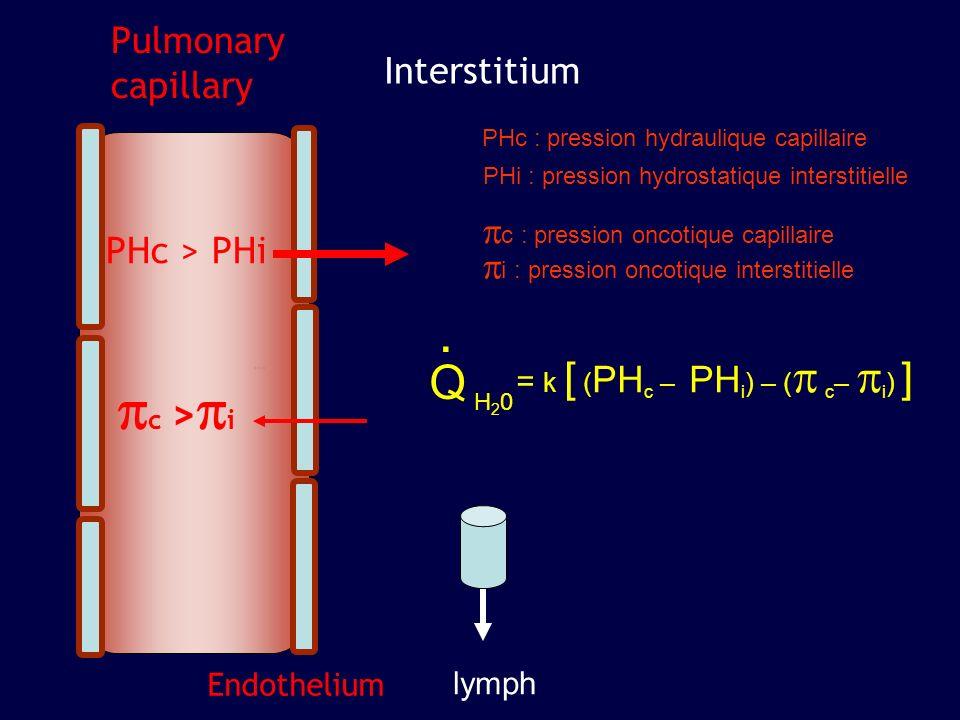 Pulmonary capillary Interstitium Alveolus Endothelium lymph Epithelium PHc > PHi Surface tension A .