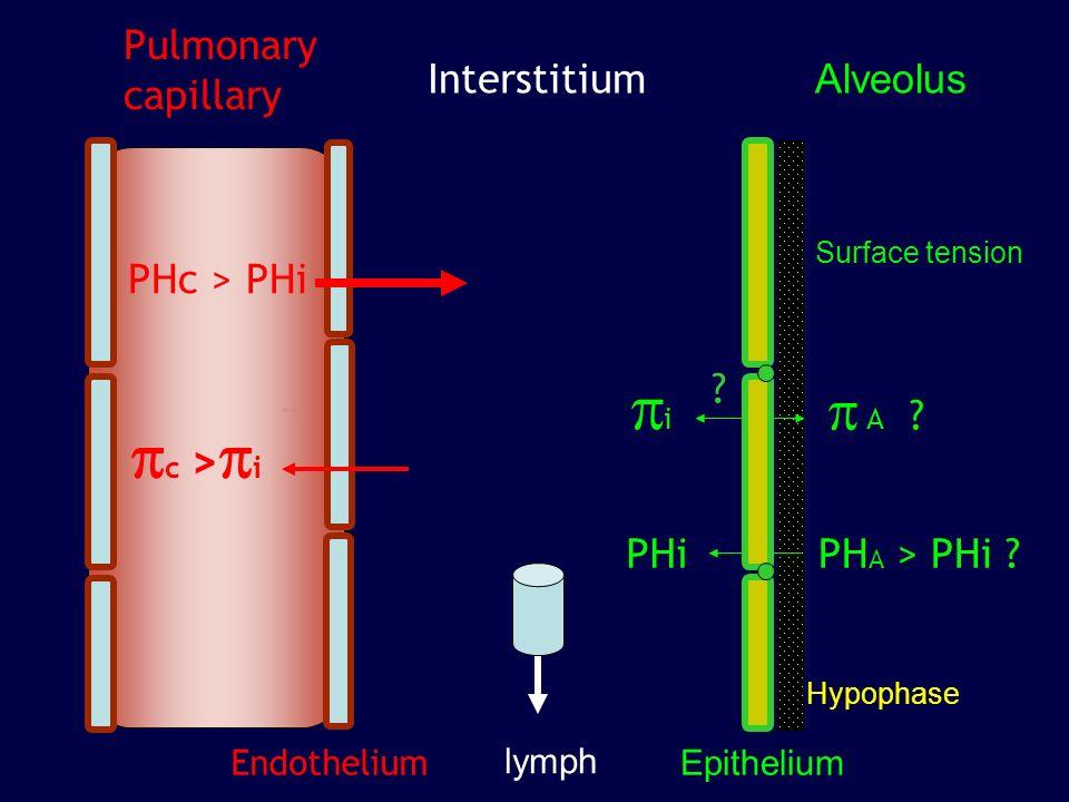 150 100 Fluid absorption rate (nl/s) No Glucose 50 0 C Amiloride 10 -4 M * * * Voies de transport du Na + dans l epithélium alvéolaire Basset et al.