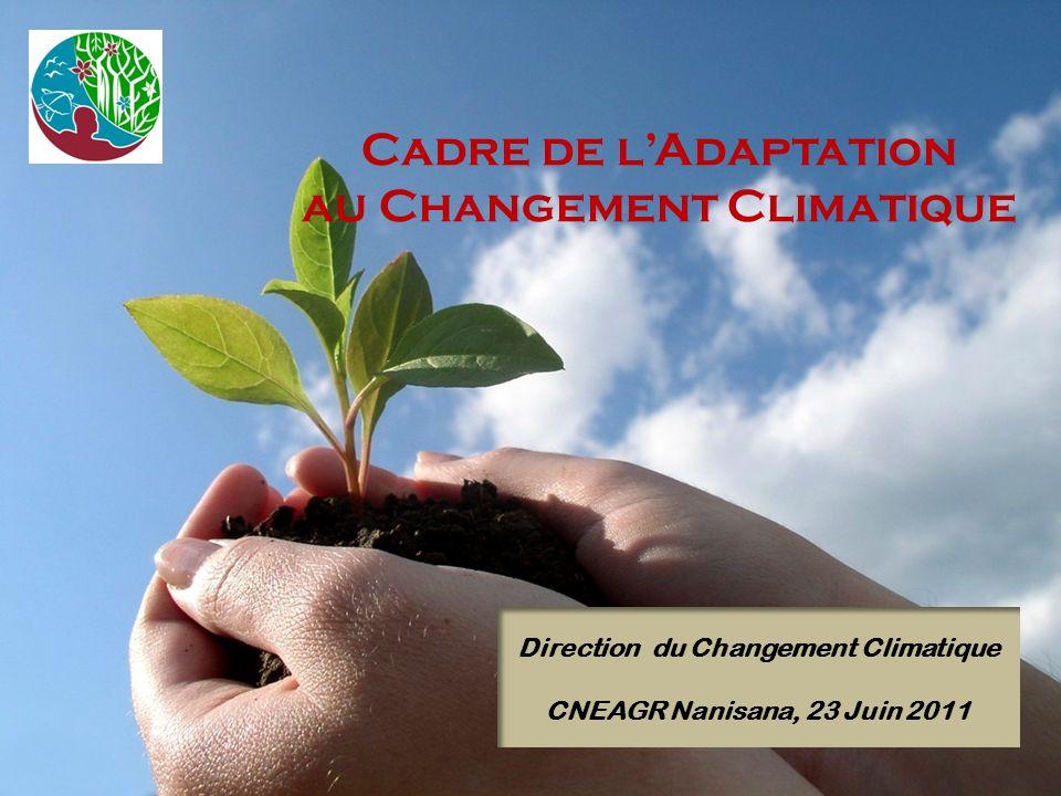 Cadre de lAdaptation au Changement Climatique Direction du Changement Climatique CNEAGR Nanisana, 23 Juin 2011