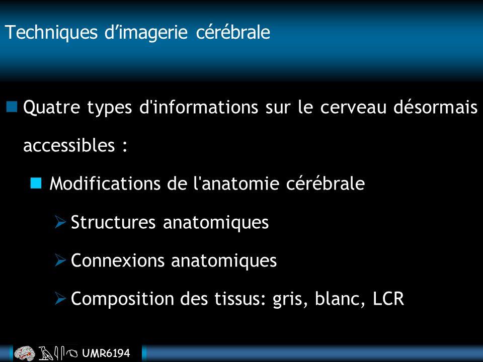 UMR6194 Techniques dimagerie cérébrale Quatre types d'informations sur le cerveau désormais accessibles : Modifications de l'anatomie cérébrale Struct