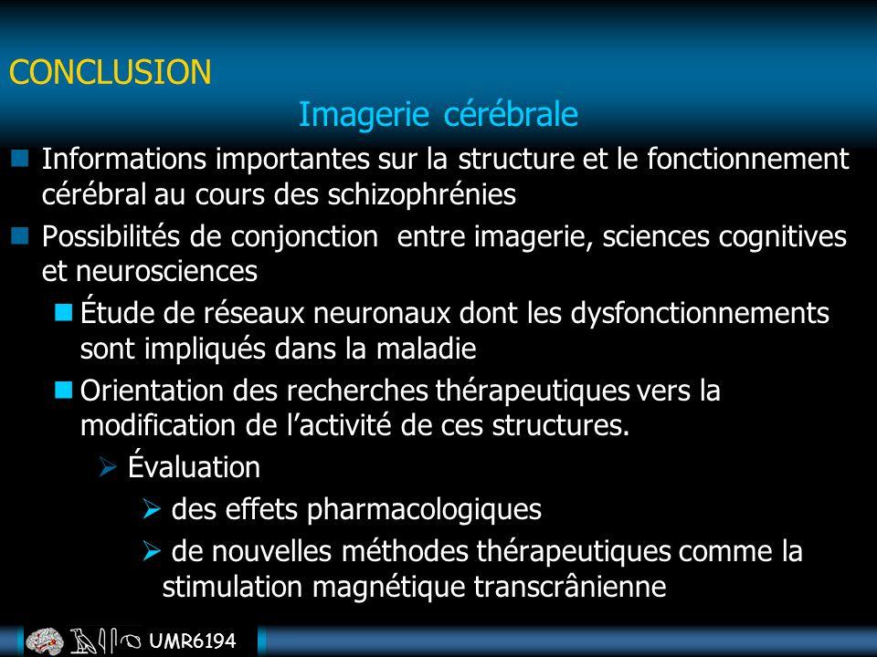 UMR6194 Imagerie cérébrale Informations importantes sur la structure et le fonctionnement cérébral au cours des schizophrénies Possibilités de conjonc
