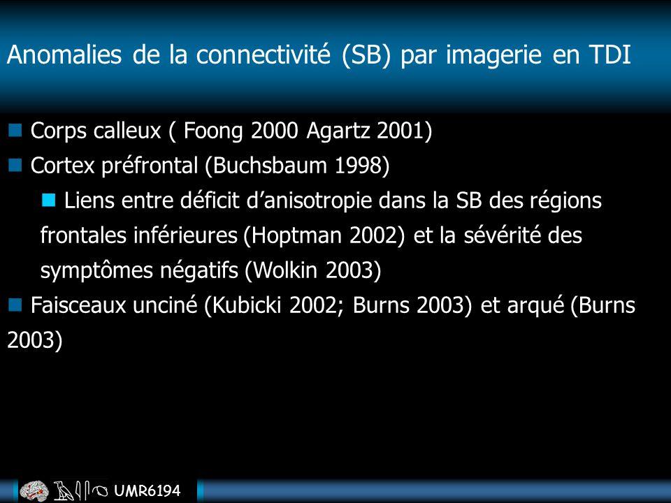 UMR6194 Anomalies de la connectivité (SB) par imagerie en TDI Corps calleux ( Foong 2000 Agartz 2001) Cortex préfrontal (Buchsbaum 1998) Liens entre d