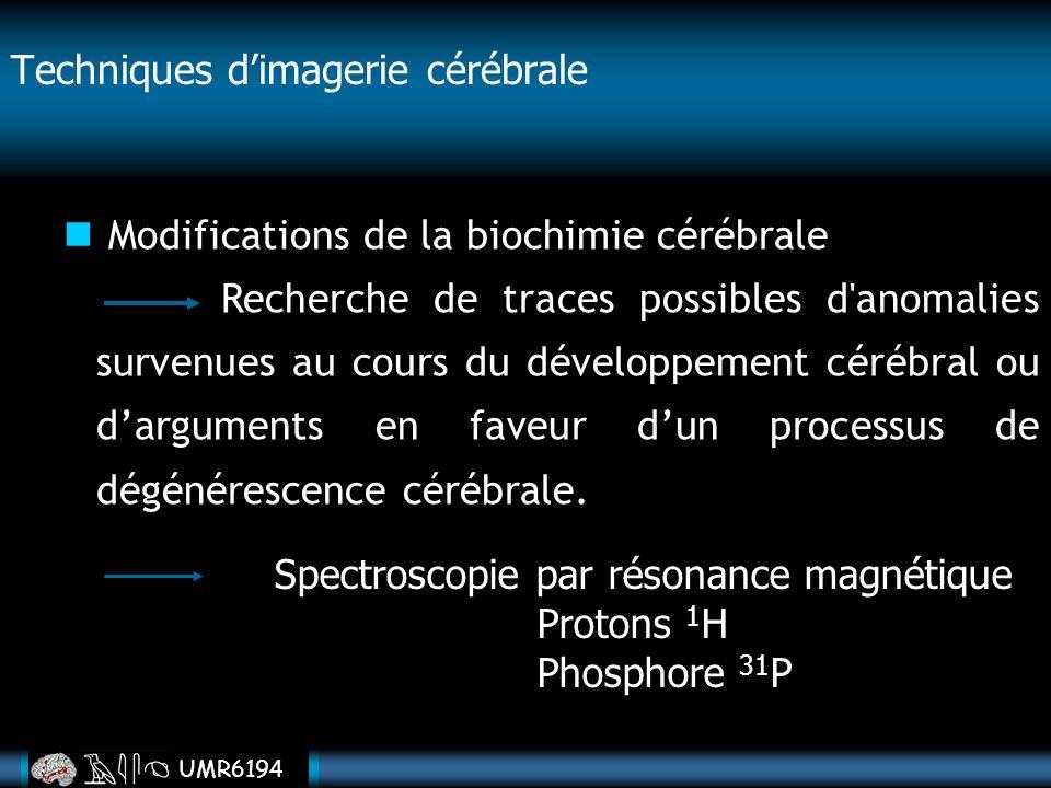 UMR6194 Techniques dimagerie cérébrale Modifications de la biochimie cérébrale Recherche de traces possibles d'anomalies survenues au cours du dévelop