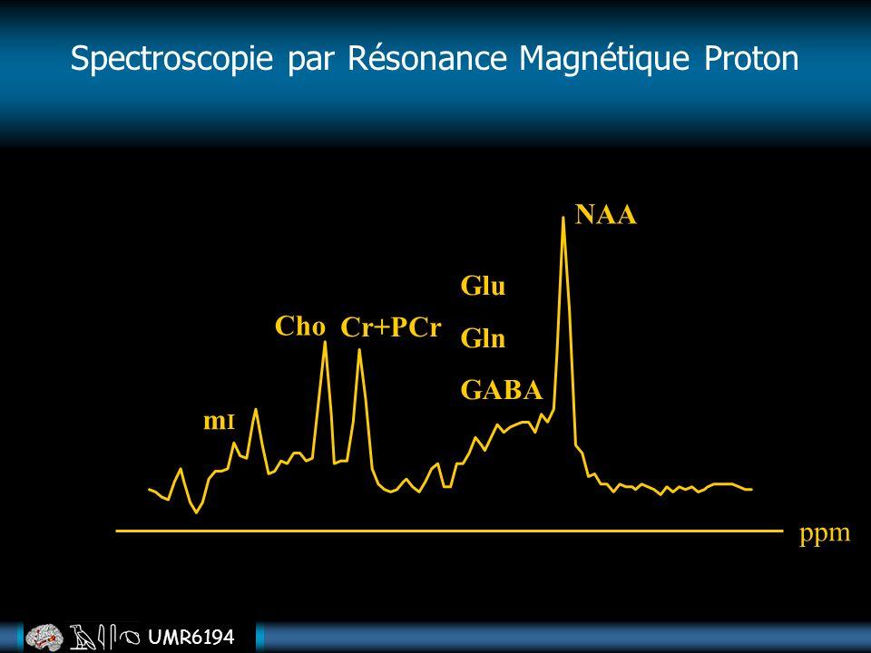 UMR6194 Cho Cr+PCr NAA mImI Glu Gln GABA ppm Spectroscopie par Résonance Magnétique Proton
