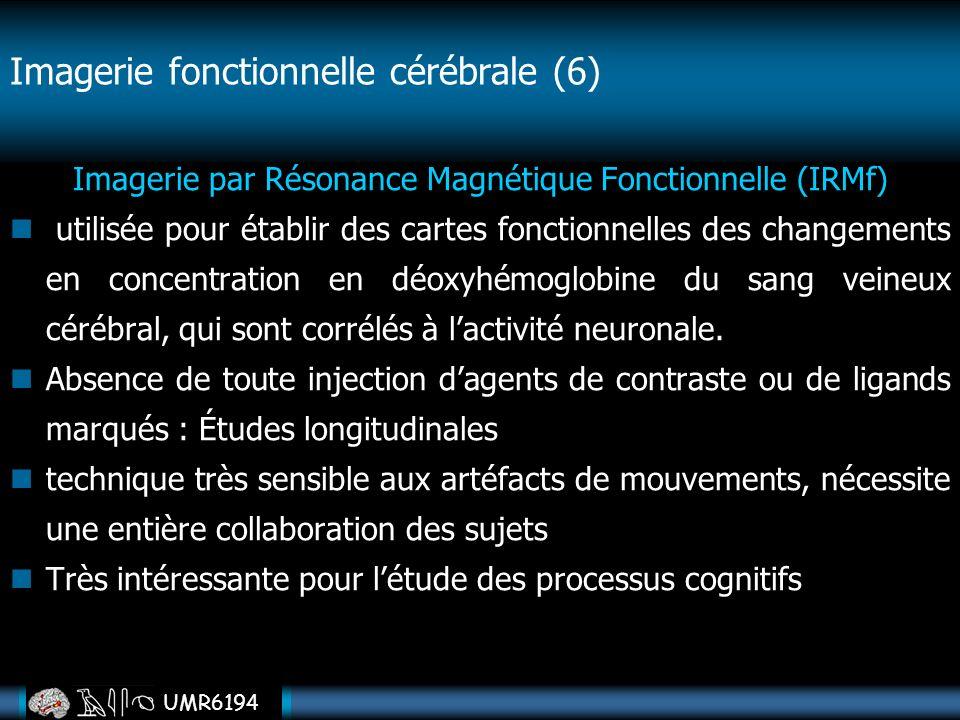 UMR6194 Imagerie par Résonance Magnétique Fonctionnelle (IRMf) utilisée pour établir des cartes fonctionnelles des changements en concentration en déo