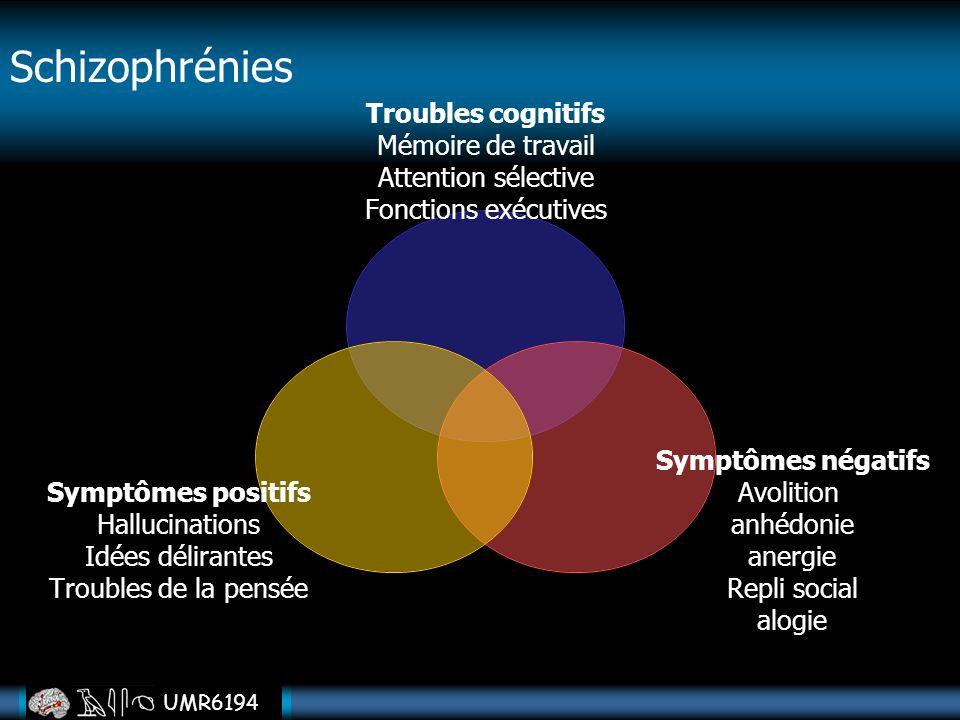 UMR6194 Troubles cognitifs Mémoire de travail Attention sélective Fonctions exécutives Symptômes négatifs Avolition anhédonie anergie Repli social alo