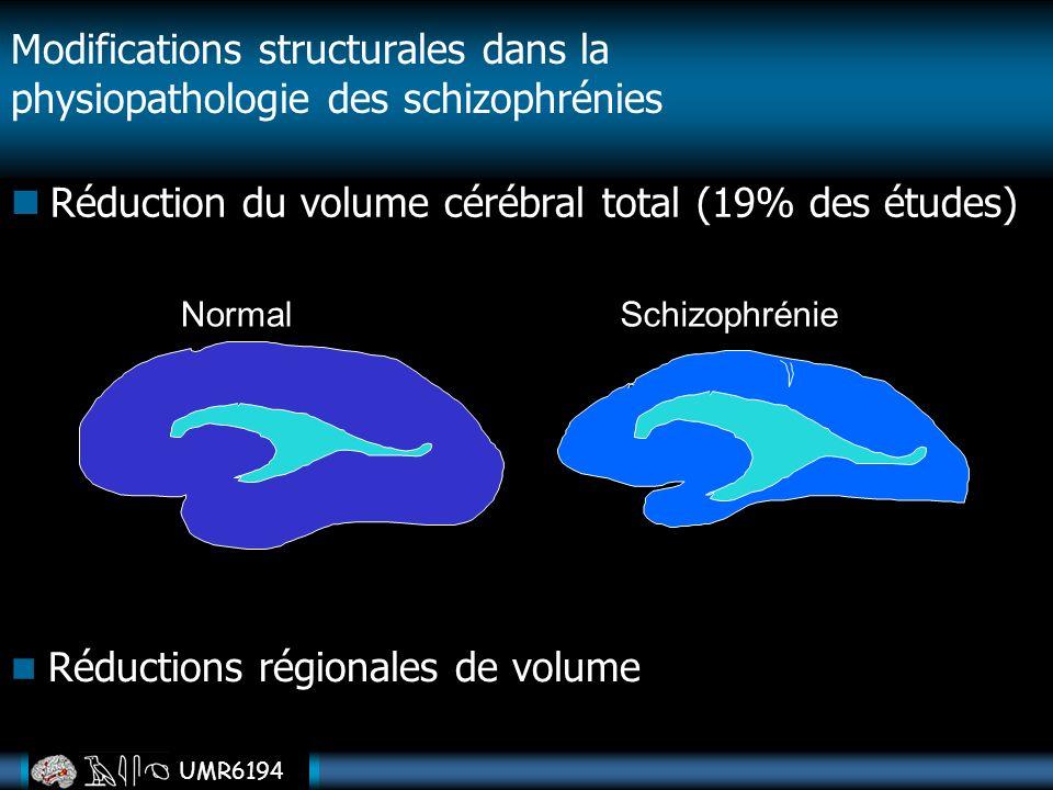 Modifications structurales dans la physiopathologie des schizophrénies Réduction du volume cérébral total (19% des études) NormalSchizophrénie Réducti