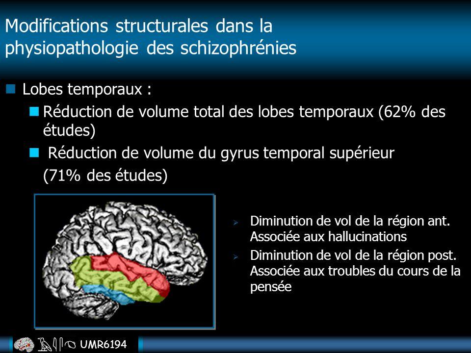 UMR6194 Lobes temporaux : Réduction de volume total des lobes temporaux (62% des études) Réduction de volume du gyrus temporal supérieur (71% des étud