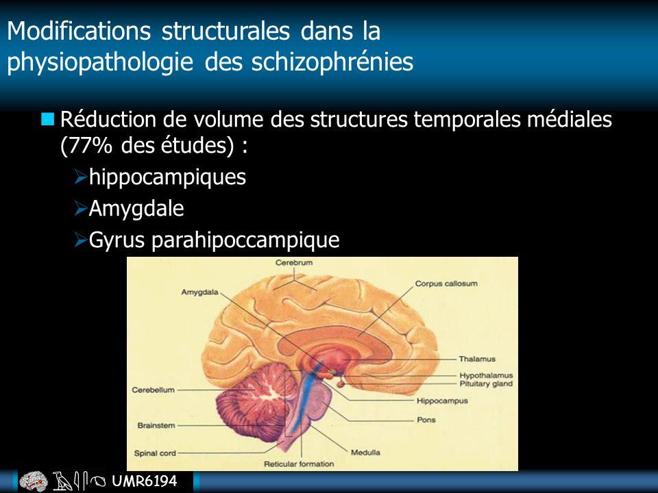 UMR6194 Réduction de volume des structures temporales médiales (77% des études) : hippocampiques Amygdale Gyrus parahipoccampique Modifications struct