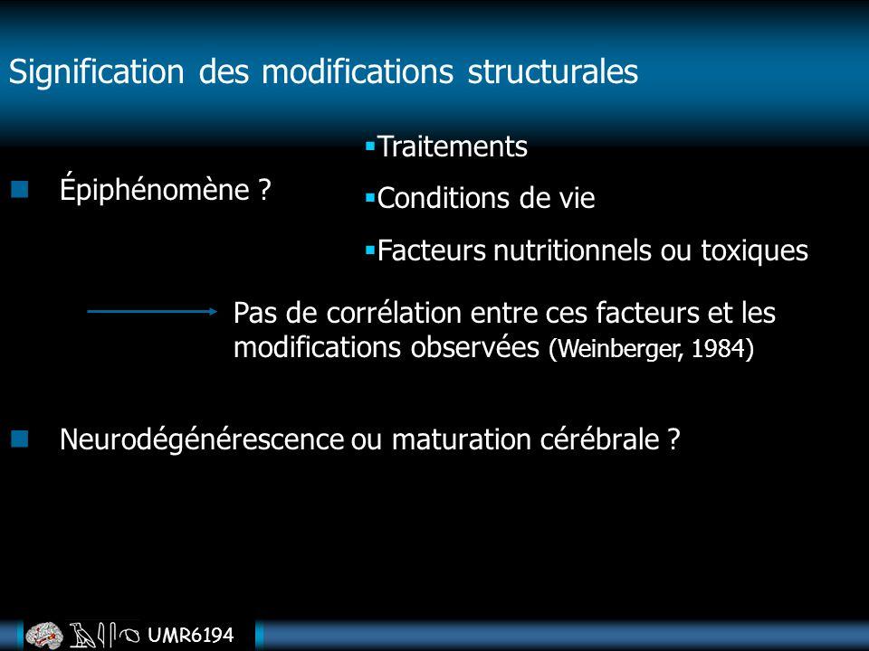 UMR6194 Signification des modifications structurales Épiphénomène ? Neurodégénérescence ou maturation cérébrale ? Traitements Conditions de vie Facteu
