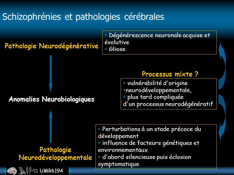 UMR6194 Anomalies Neurobiologiques Pathologie Neurodégénérative Pathologie Neurodéveloppementale Perturbations à un stade précoce du développement inf