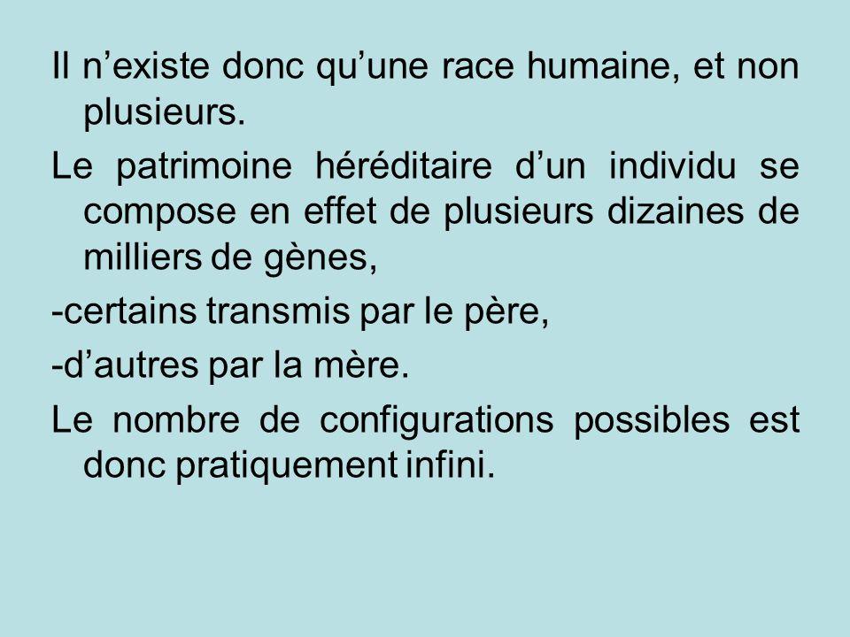 Il nexiste donc quune race humaine, et non plusieurs. Le patrimoine héréditaire dun individu se compose en effet de plusieurs dizaines de milliers de
