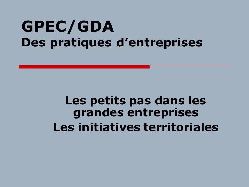 GPEC/GDA Des pratiques dentreprises Les petits pas dans les grandes entreprises Les initiatives territoriales