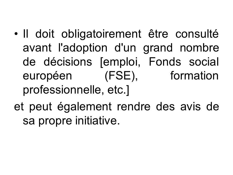 Il doit obligatoirement être consulté avant l'adoption d'un grand nombre de décisions [emploi, Fonds social européen (FSE), formation professionnelle,