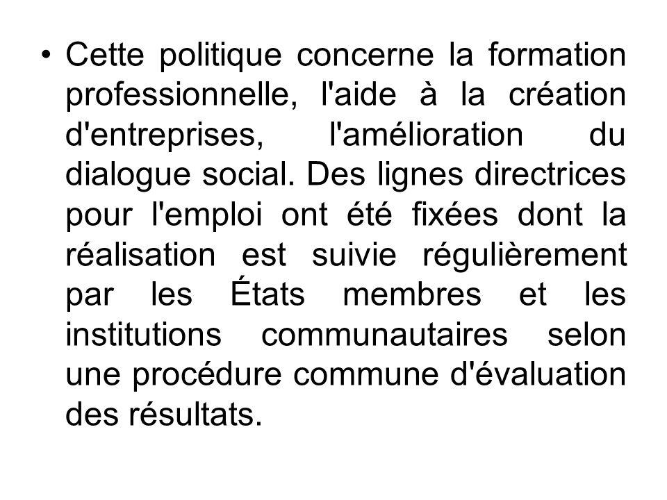 Cette politique concerne la formation professionnelle, l'aide à la création d'entreprises, l'amélioration du dialogue social. Des lignes directrices p