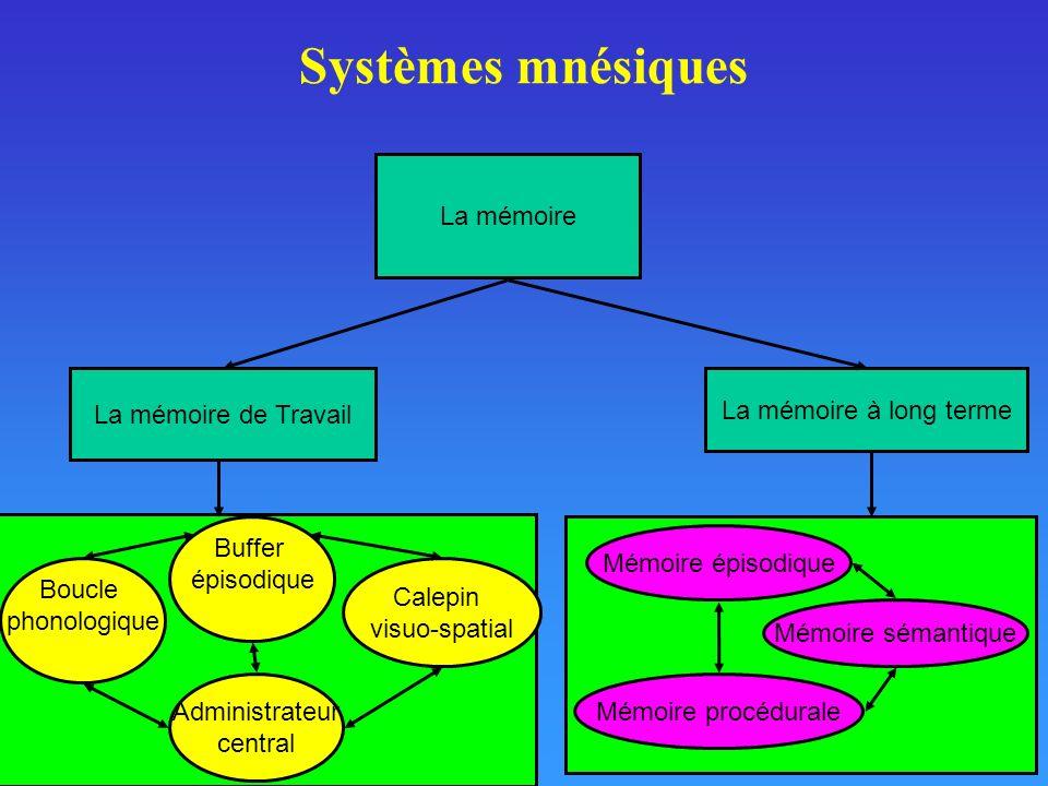 Systèmes mnésiques La mémoire La mémoire de Travail La mémoire à long terme Boucle phonologique Calepin visuo-spatial Administrateur central Mémoire é