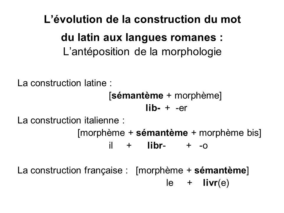 Lévolution de la construction du mot du latin aux langues romanes : Lantéposition de la morphologie La construction latine : [sémantème + morphème] li