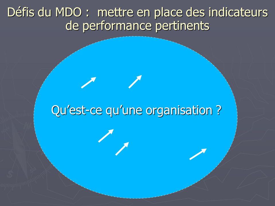 Défis du MDO : mettre en place des indicateurs de performance pertinents Quest-ce quune organisation ?
