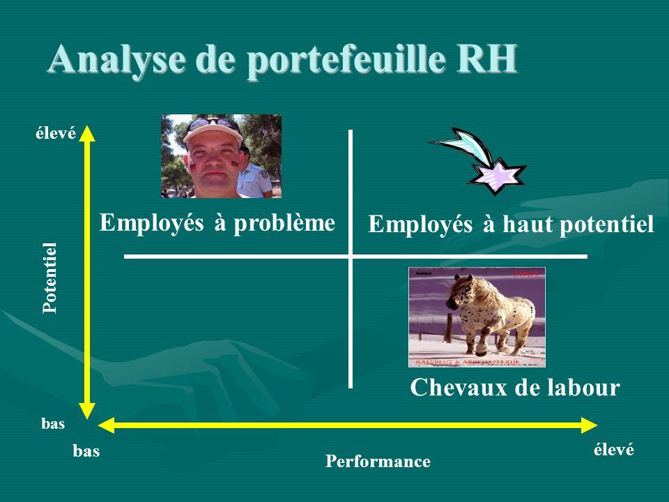 Performance Potentiel élevé bas élevé bas Employés à problème Employés à haut potentiel Chevaux de labour Analyse de portefeuille RH