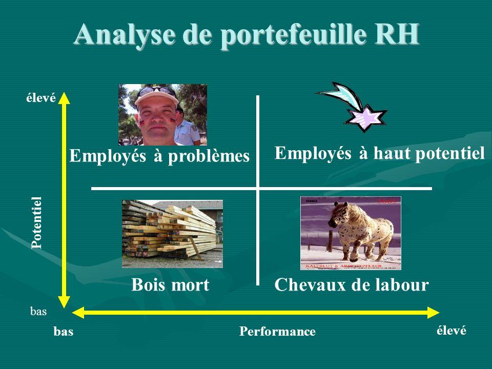 Performance Potentiel élevé bas élevé bas Employés à problèmes Employés à haut potentiel Bois mortChevaux de labour Analyse de portefeuille RH