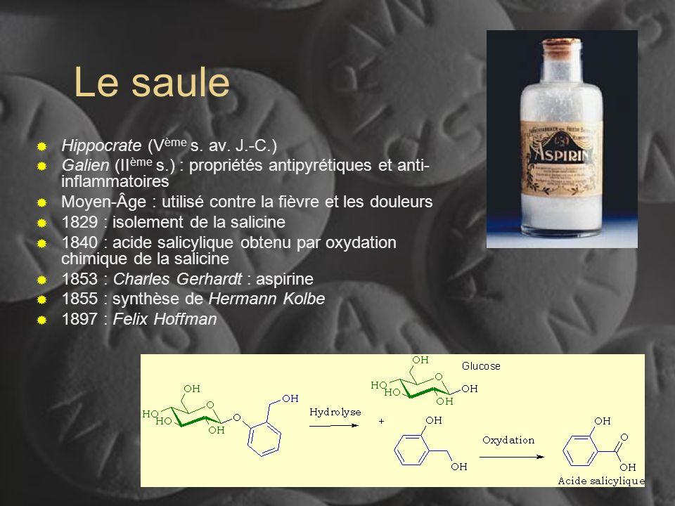 I-39 Le saule Hippocrate (V ème s. av. J.-C.) Galien (II ème s.) : propriétés antipyrétiques et anti- inflammatoires Moyen-Âge : utilisé contre la fiè