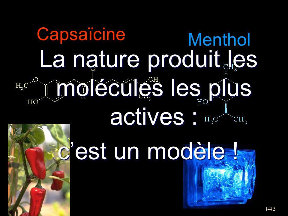 I-43 Capsaïcine La nature produit les molécules les plus actives : cest un modèle ! Menthol