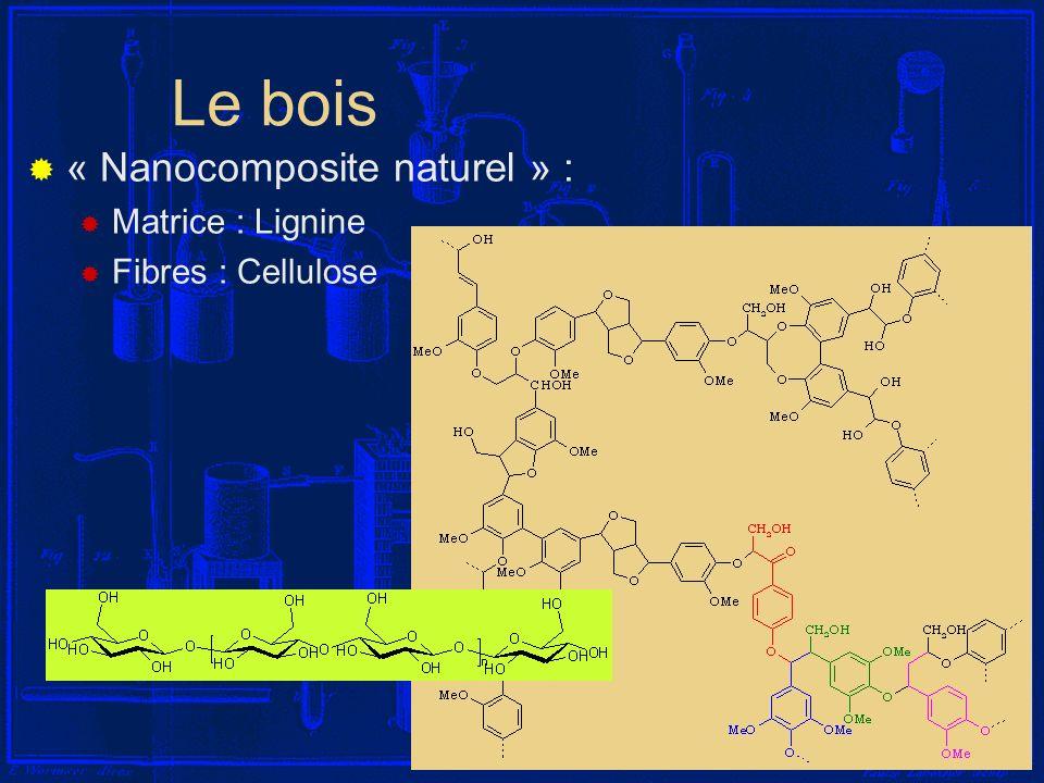 I-9 Le bois « Nanocomposite naturel » : Matrice : Lignine Fibres : Cellulose