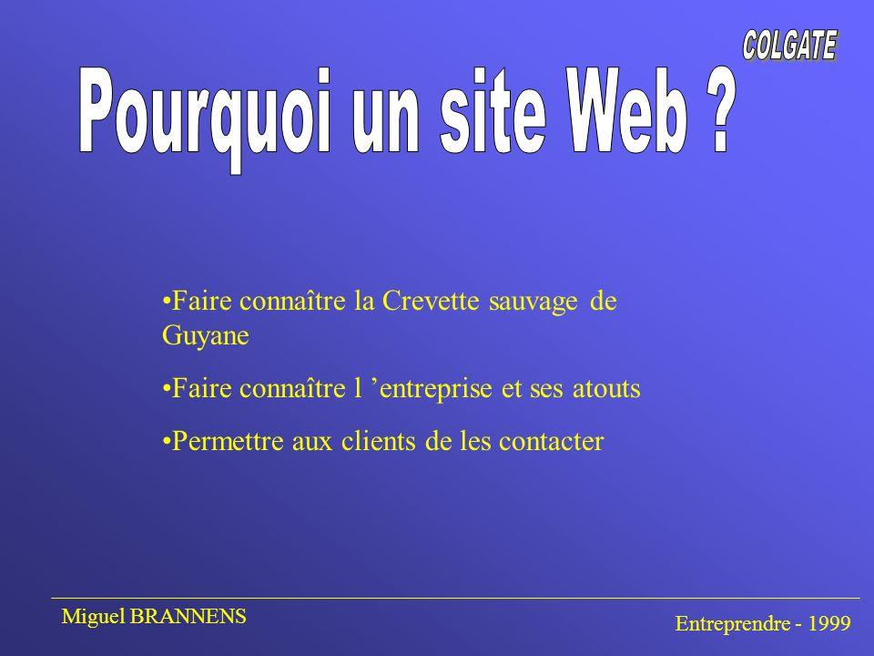 En 3 langues (Anglais, Français, Espagnol) Sobriété voulue Plusieurs pages simples mais agréables à lire Miguel BRANNENS Entreprendre - 1999
