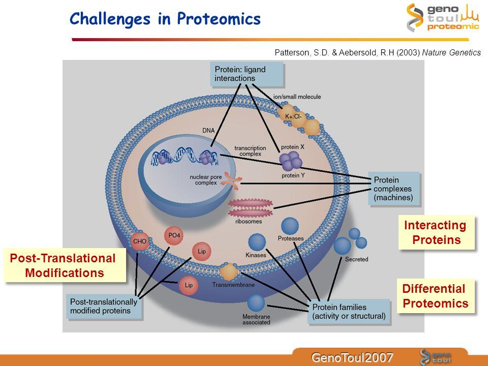 Patterson, S.D. & Aebersold, R.H (2003) Nature Genetics Differential Proteomics Differential Proteomics Interacting Proteins Interacting Proteins Post