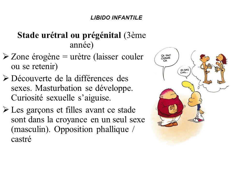 LIBIDO INFANTILE Stade urétral ou prégénital (3ème année) Zone érogène = urètre (laisser couler ou se retenir) Découverte de la différences des sexes.