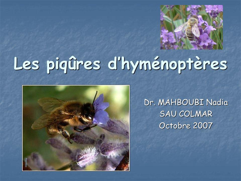 Les piqûres dhyménoptères Dr. MAHBOUBI Nadia SAU COLMAR Octobre 2007