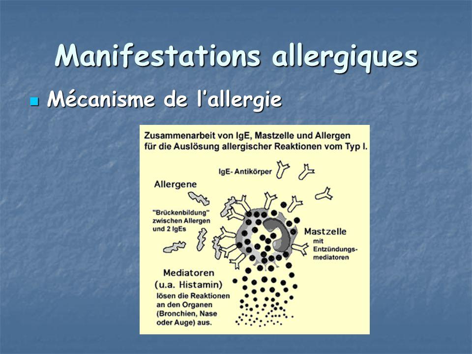 Manifestations allergiques Mécanisme de lallergie Mécanisme de lallergie