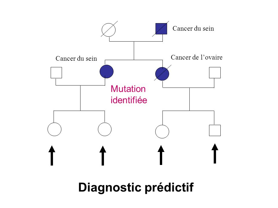 Cancer du sein Cancer de lovaire Cancer du sein Mutation identifiée Diagnostic prédictif