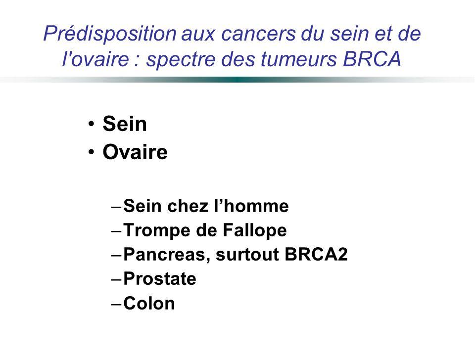 Sein Ovaire –Sein chez lhomme –Trompe de Fallope –Pancreas, surtout BRCA2 –Prostate –Colon Prédisposition aux cancers du sein et de l'ovaire : spectre