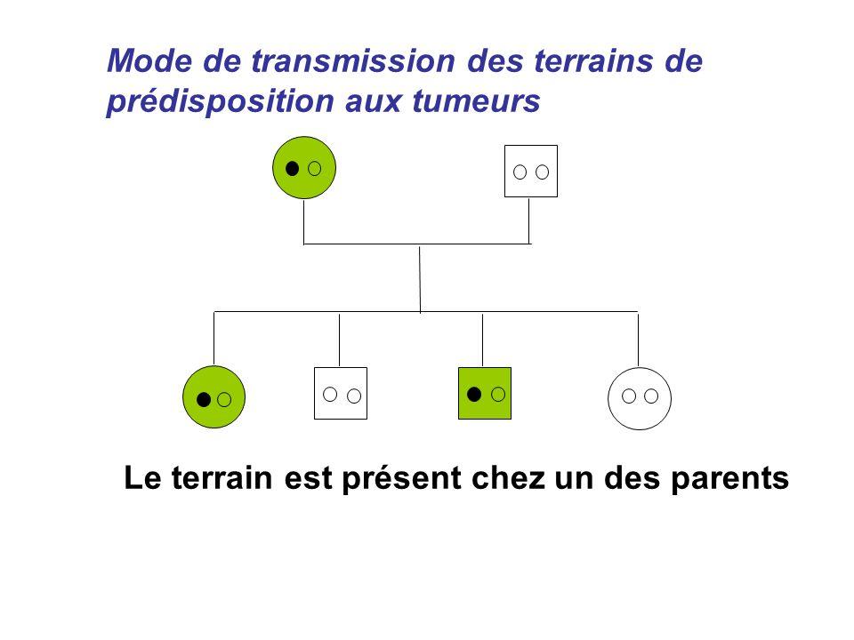 Mode de transmission des terrains de prédisposition aux tumeurs Le terrain est présent chez un des parents