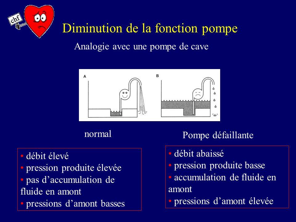 Diminution de la fonction pompe Analogie avec une pompe de cave normal débit élevé pression produite élevée pas daccumulation de fluide en amont press