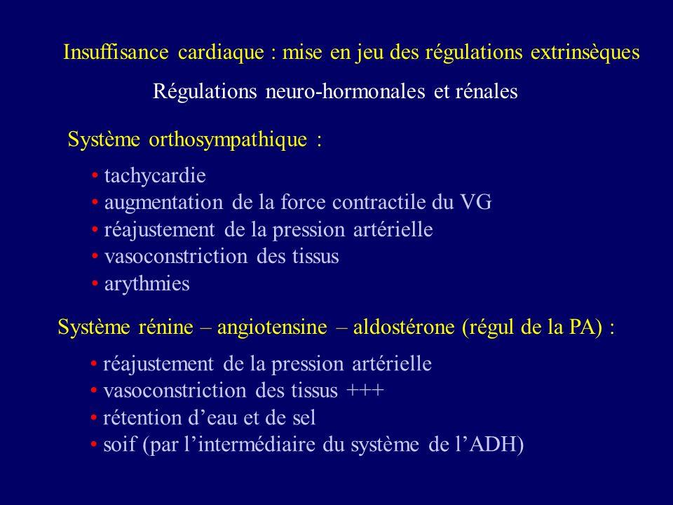 Insuffisance cardiaque : mise en jeu des régulations extrinsèques Régulations neuro-hormonales et rénales tachycardie augmentation de la force contrac