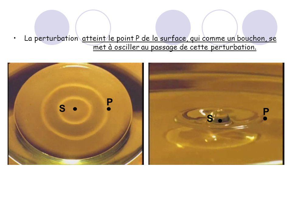 La perturbationatteint le point P de la surface, qui comme un bouchon, se met à osciller au passage de cette perturbation. S P S P