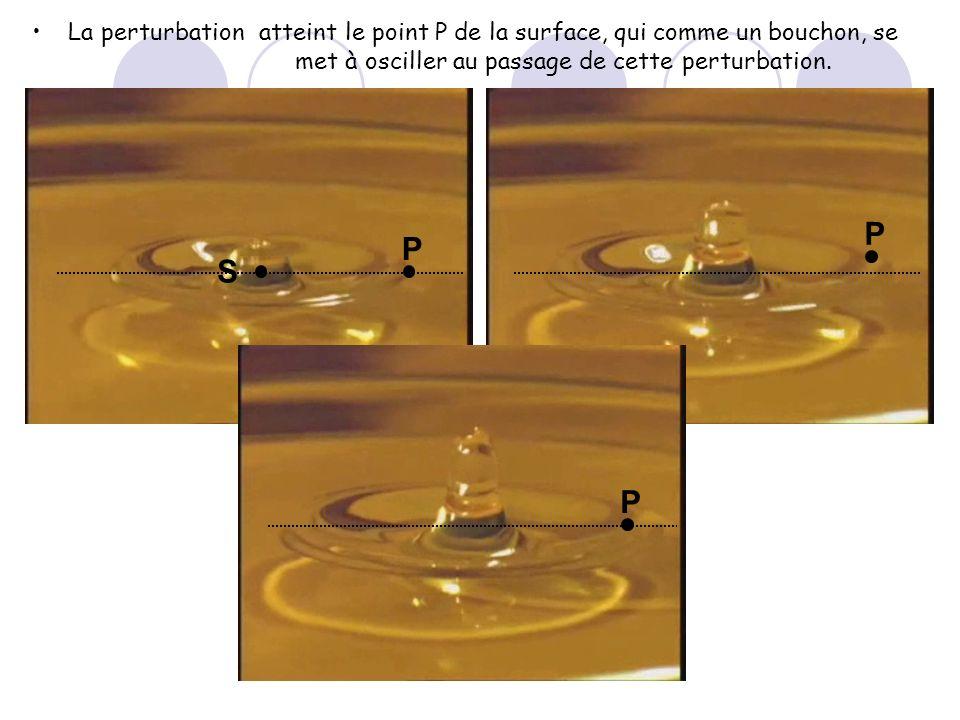 La perturbationatteint le point P de la surface, qui comme un bouchon, se met à osciller au passage de cette perturbation. S P P P