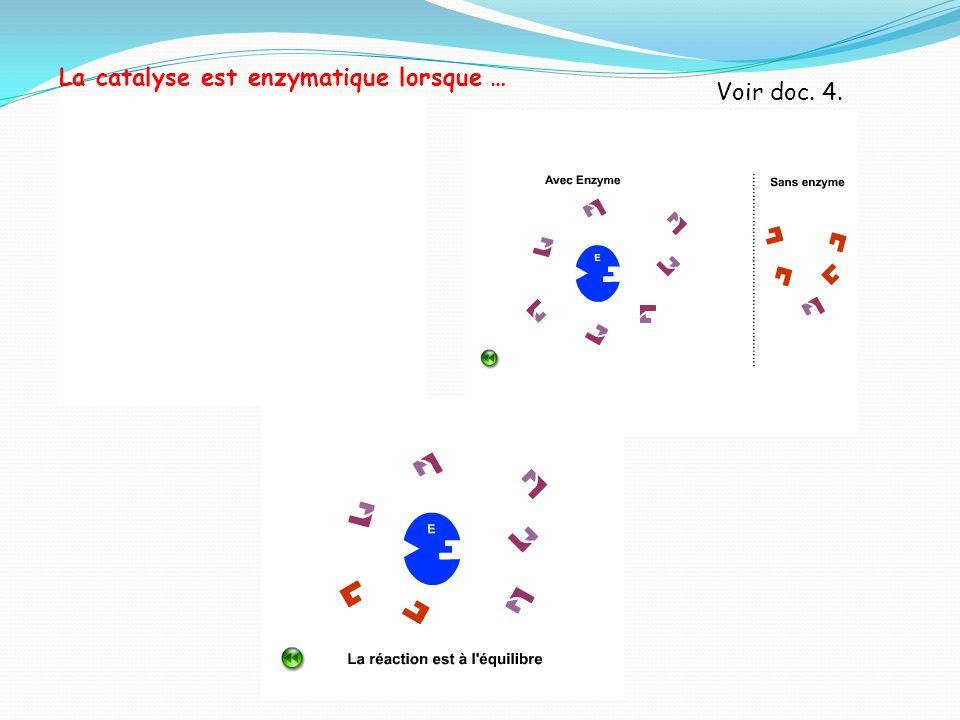 La catalyse est enzymatique lorsque … Voir doc. 4.