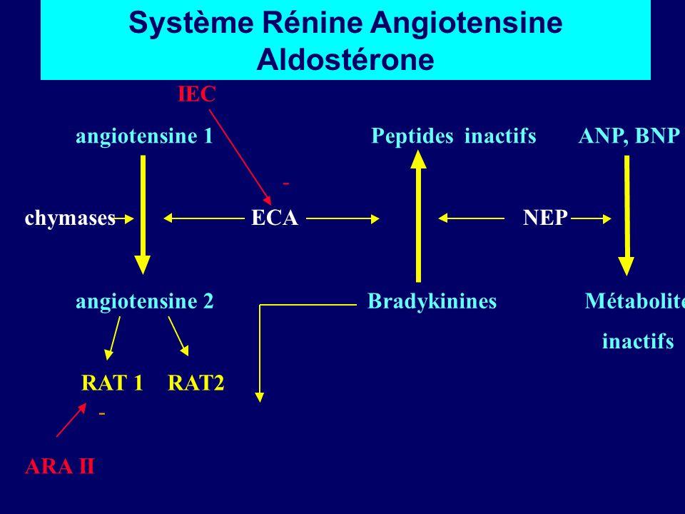 IEC angiotensine 1 Peptides inactifs ANP, BNP chymases ECA NEP angiotensine 2 Bradykinines Métabolites inactifs RAT 1 RAT2 ARA II - - Système Rénine A