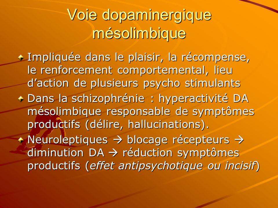 Voie dopaminergique mésolimbique Impliquée dans le plaisir, la récompense, le renforcement comportemental, lieu daction de plusieurs psycho stimulants