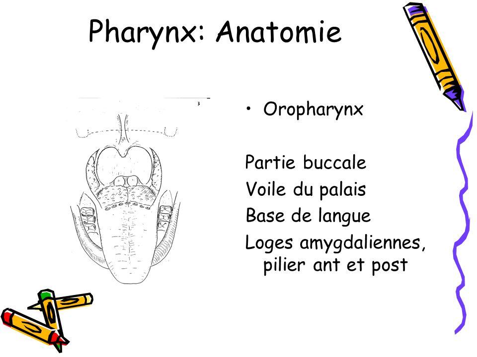 Pharynx: Anatomie Oropharynx Partie buccale Voile du palais Base de langue Loges amygdaliennes, pilier ant et post