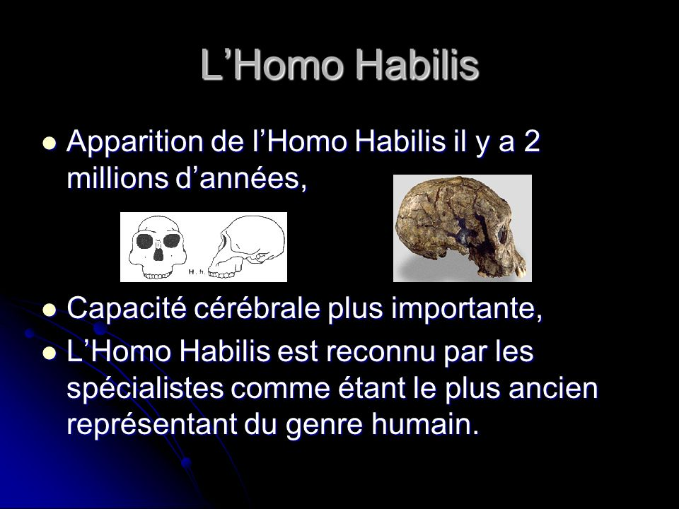 LHomo Habilis Apparition de lHomo Habilis il y a 2 millions dannées, Apparition de lHomo Habilis il y a 2 millions dannées, Capacité cérébrale plus importante, Capacité cérébrale plus importante, LHomo Habilis est reconnu par les spécialistes comme étant le plus ancien représentant du genre humain.