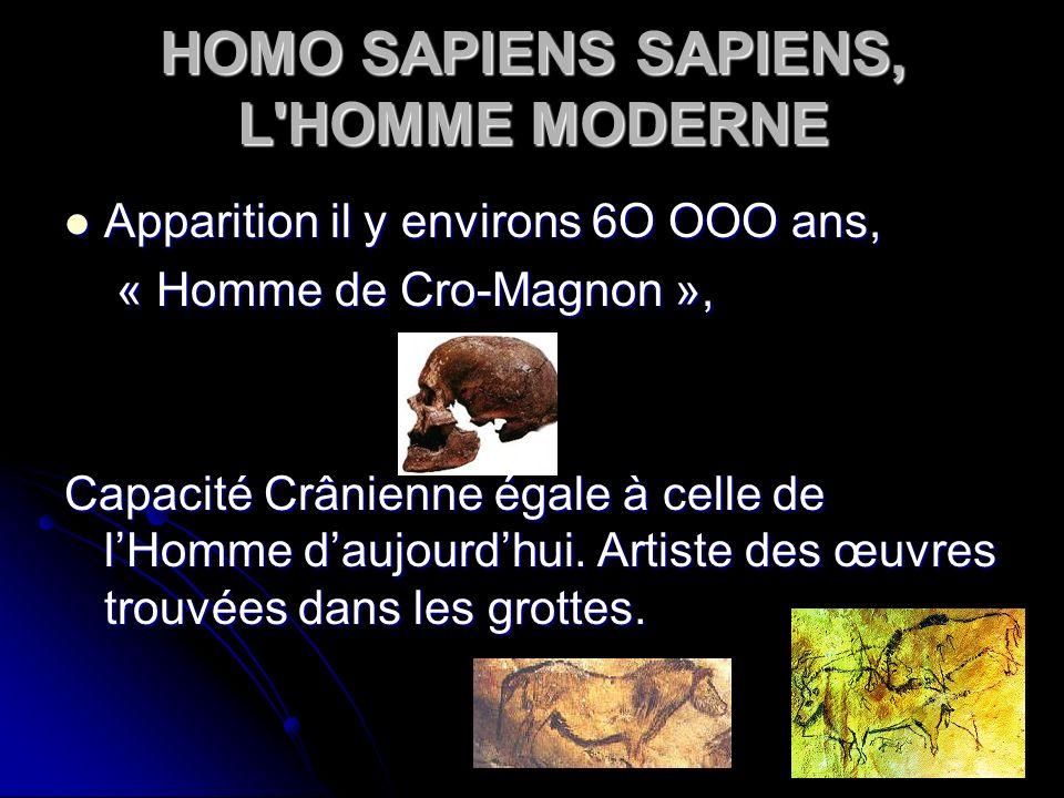 HOMO SAPIENS SAPIENS, L'HOMME MODERNE Apparition il y environs 6O OOO ans, Apparition il y environs 6O OOO ans, « Homme de Cro-Magnon », « Homme de Cr