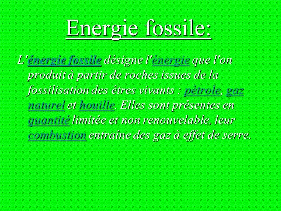 Energie fossile: L énergie fossile désigne l énergie que l on produit à partir de roches issues de la fossilisation des êtres vivants : pétrole, gaz naturel et houille.