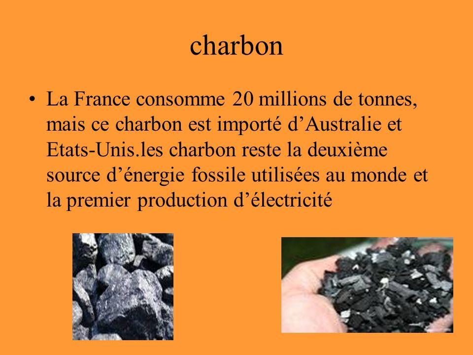 charbon La France consomme 20 millions de tonnes, mais ce charbon est importé dAustralie et Etats-Unis.les charbon reste la deuxième source dénergie fossile utilisées au monde et la premier production délectricité