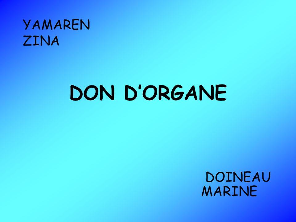 DON DORGANE YAMAREN ZINA DOINEAU MARINE